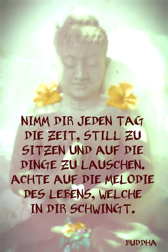 #zitat #buddha #stille   Yoga & Meditation   Pinterest ...