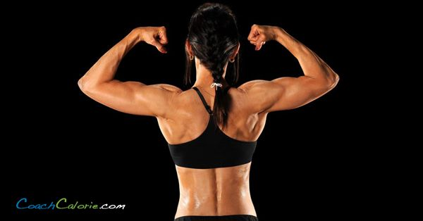 10 Muscle Building Tips to Increase Muscle Tone