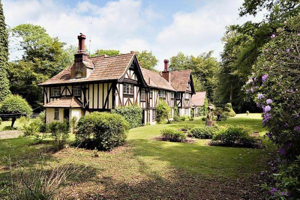 Bignell Wood Brook Lyndhurst, Hampshire