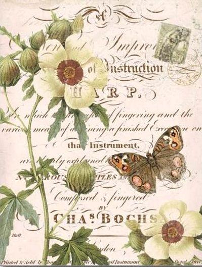 trouvé sur http://www.zazzle.fr/carte_postale_botanique_florale_vintage-239623139631498924