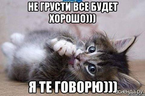 Фото Елены Юдиной.