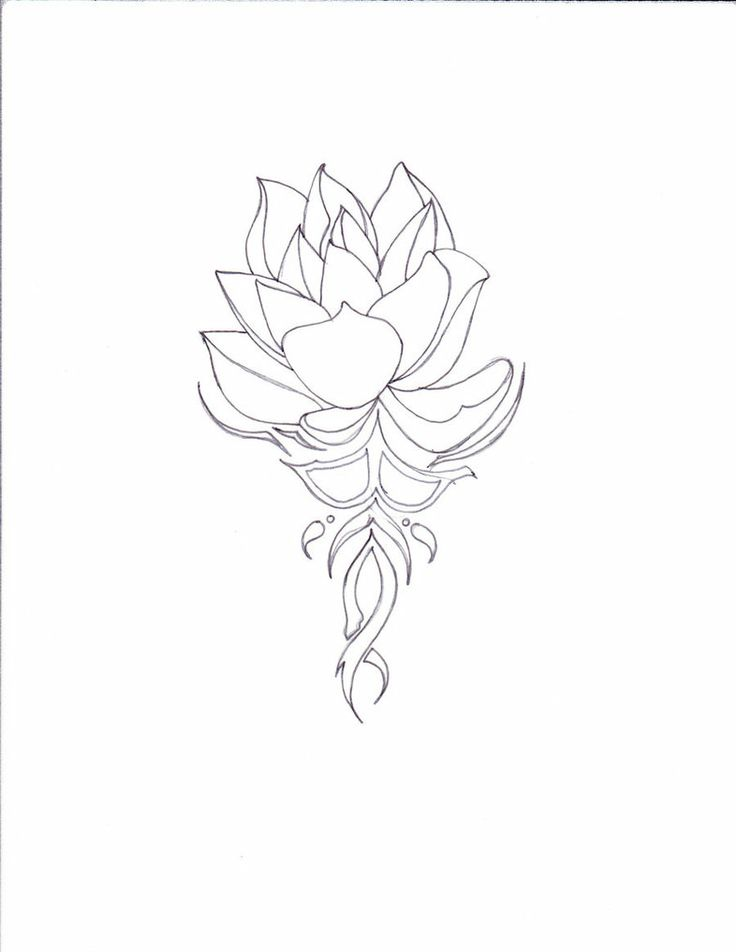 pictures of lotus tattoo drawings | lotus on tribal lotus tattoos