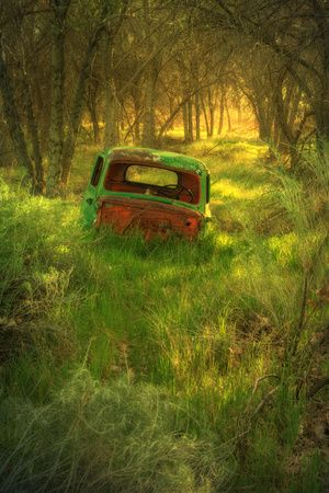 Old Pickup Truck in Woods, Kern County California Photographic Print at AllPosters.com