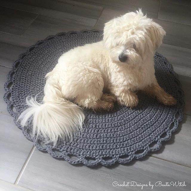 Happy provar nya mattan! 70 cm i diameter. Virkad av 3 nystan Ribbon XL i färgen Stone Grey med virknål 10. Mönster kommer i bloggen - BautaWitch.se. #virka #virkat #bautawitch #matta #ribbonxl #hoooked #valp #cotondetulear #cottondetulear #cotondetulearsofinstagram #crochet