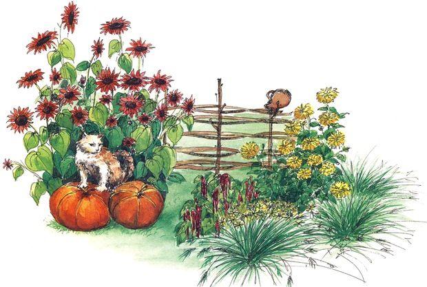 Осенний цветник у забора У забора можно разместить цветник в стиле кантри. Высокорослые однолетние подсолнечники (2 и 5) загородят вас от посторонних взглядов. Амарант (1) и рудбекия (3) уравновесят среднюю часть цветника, повторяя цвета подсолнечников – красный и желтый. Обрамляет цветник ячмень гривастый (4), поначалу зеленый, с наступлением осени он будет становится серебристо-соломенного цвета.