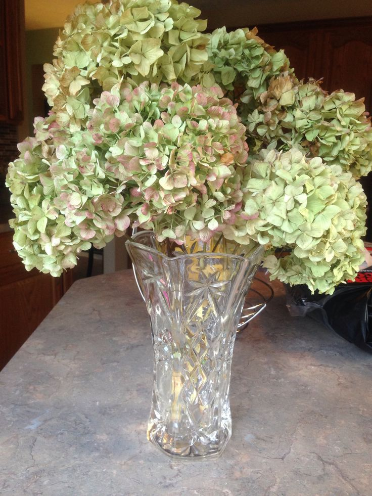 Dried hydrangea arrangement my creations pinterest