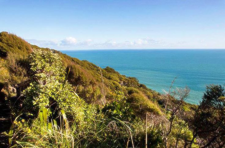 Say adios to the treadmill and opt for a more scenic route this summer. Featuring beautiful coastlines, stunning waterfalls and native bush, we promise these weekend walks will bring you delight and feed your soul—they're the best hikes and walks in Auckland.