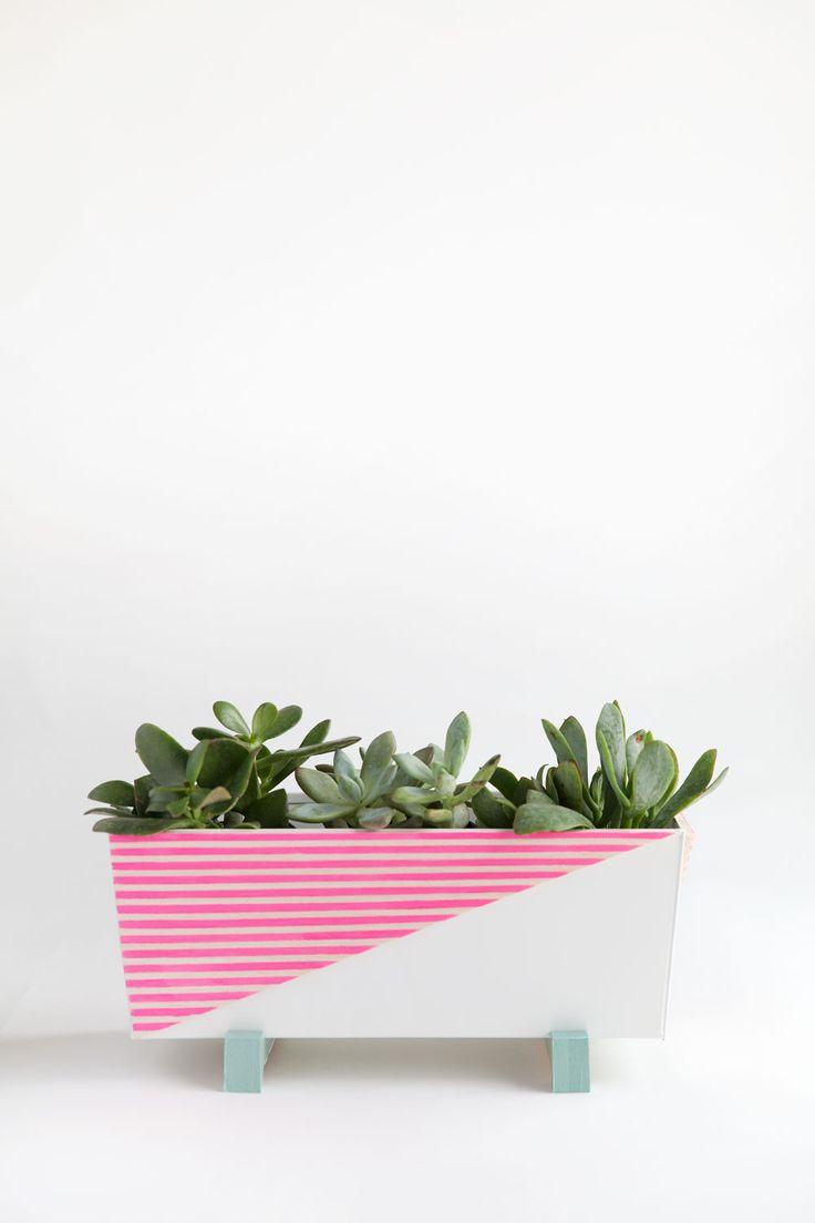 986 best DIY Succulents and Plant Pots images on Pinterest ...