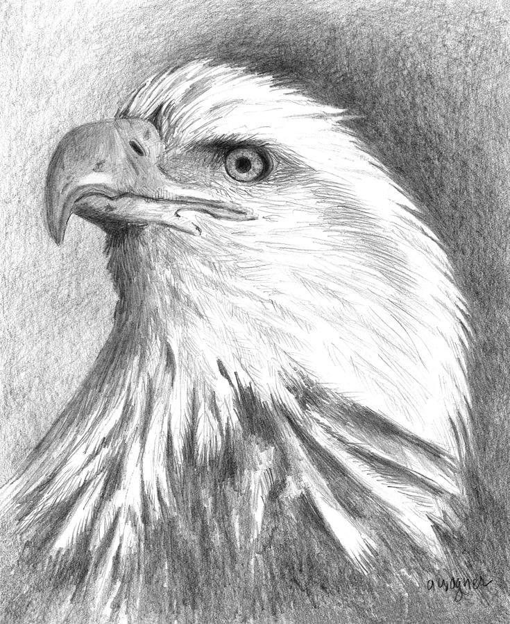 рисунки орлов карандашом