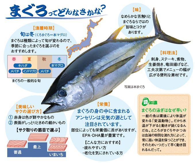まぐろ|レシピ|魚耕ホールディングス