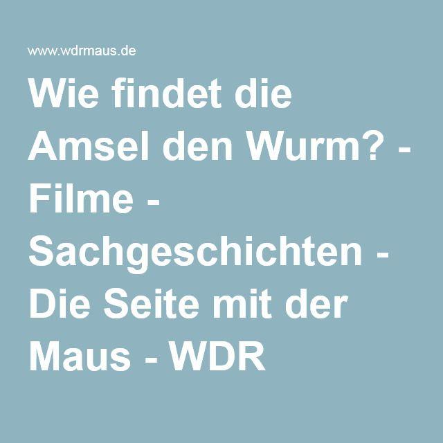 Wie findet die Amsel den Wurm? - Filme - Sachgeschichten - Die Seite mit der Maus - WDR Fernsehen