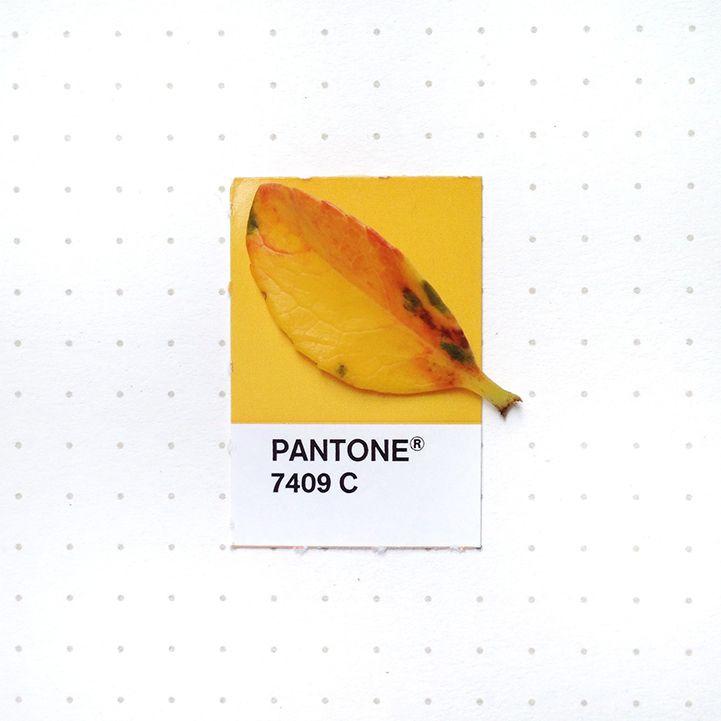 103 best u201c Tiny PMS Matchu201d·Petrichor images on Pinterest Color - sample pms color chart