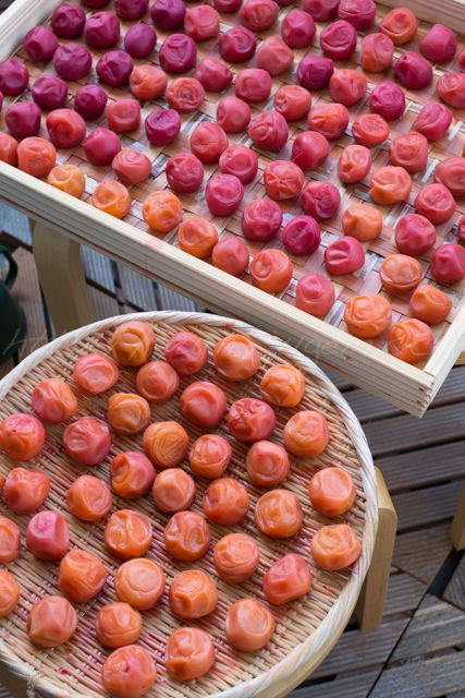 Umeboshi, Japanese Pickled Plums 梅干し * JAPAN - these things just make me happy when ever I get my paws on them... yum!