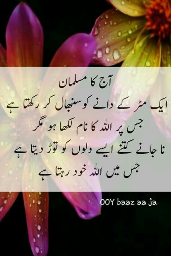 Pin By Syeda Asma On I Love Allah Urdu Quotes Quotes Urdu Poetry