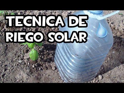 Descubre La Técnica Que Está Revolucionando El Mundo De La Jardinería. Reutiliza Una Garrafa De Plástico Y Verás Como Tus Plantan Crecen Sin Parar.
