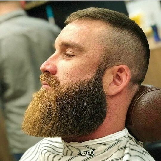 Perfectly Trimmed Ginger Beard