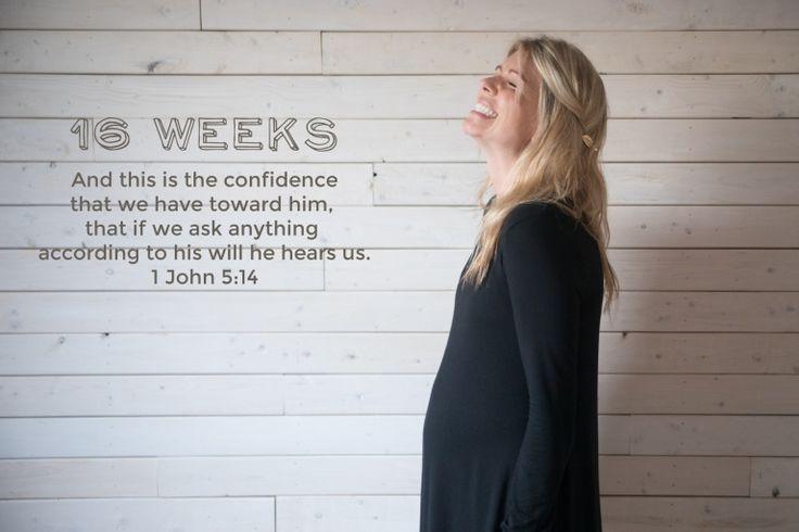 bump-photo-week-16