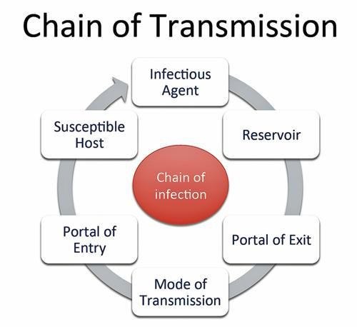 5 types of mode of transmission-6696