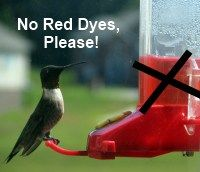 You do not need to add red dyes or food coloring to your hummingbird nectar. Make your own with just plain sugar and water, hold the red!  http://www.birdwatching-bliss.com/hummingbird-food-recipe.html