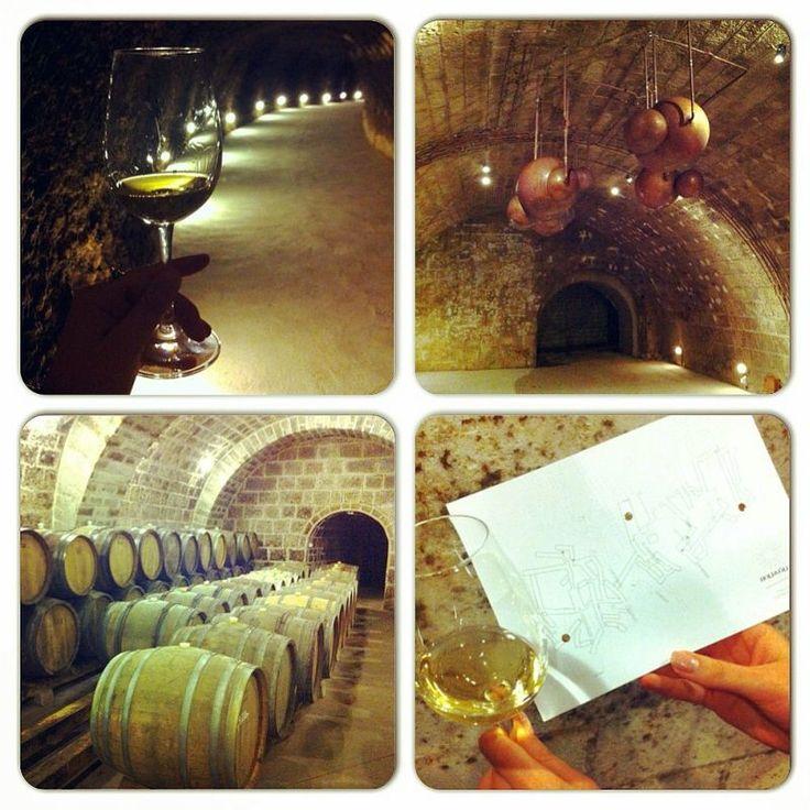 Holdvölgy Winery Mád Tokaj-Hegyalja Hungary wine cellar system