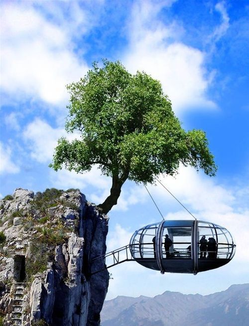Uh uh! This one is cool, but I'm not trusting a tree. I like risks but that isn't happening