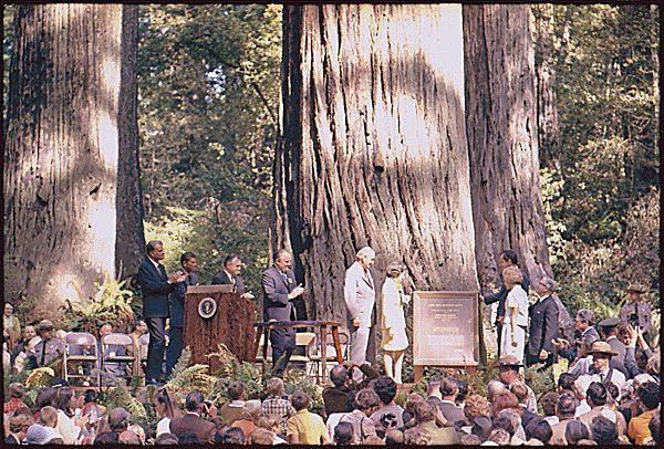 Dedication of Lady Bird Johnson Grove in Redwood National Park, California