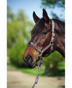 Equitheme Nylon halster Trekpaard