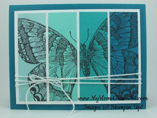 Swallowtail-Stampin-up 2