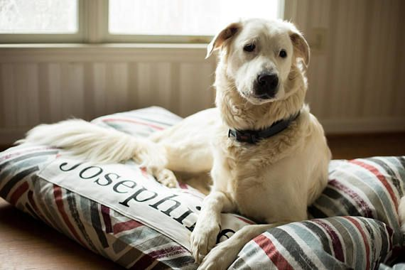 Dog Bed Cover Personalized Dog Bed Custom Dog Bed Gray