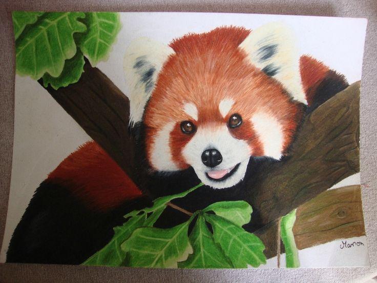 Panda roux prismacolor