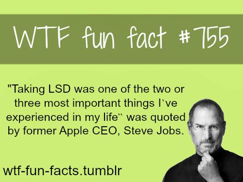 steve job fact MORE OF WTF-FUN-FACTS are coming HERE funny and weird facts ONLY