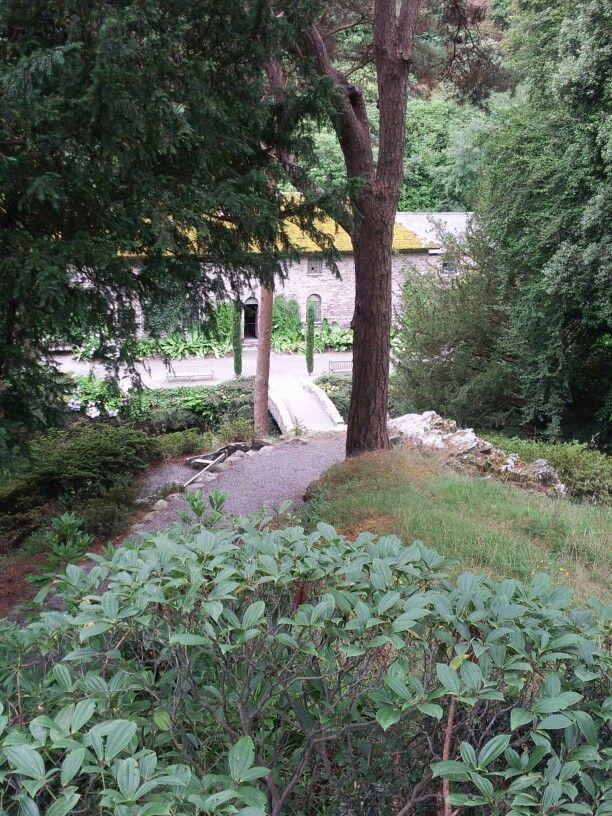More Bodnant Gardens.