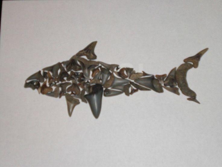 I made a shark out of fossil shark teeth I found on a beach.