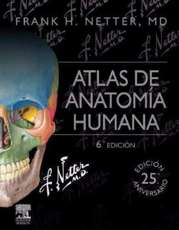 Atlas de Anatomía Humana Netter 6a Edición