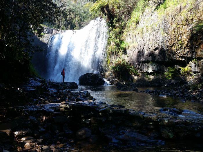 Guide Falls, Tasmanië, Australië #tasmania #tassie #australia #roadtrip #waterval