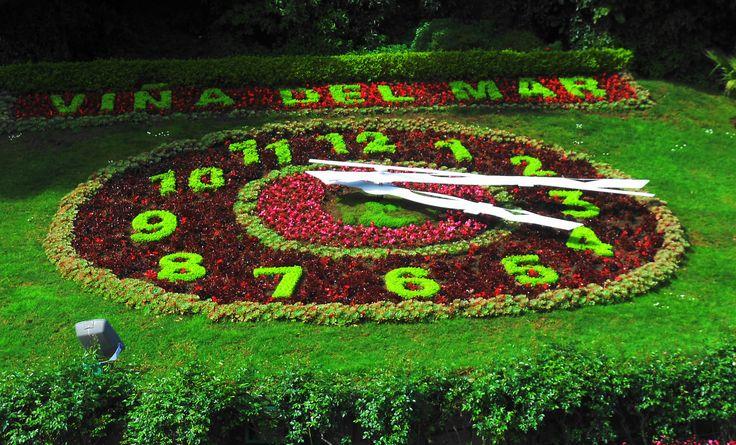 Reloj de plantas de flores, en Viña del Mar.