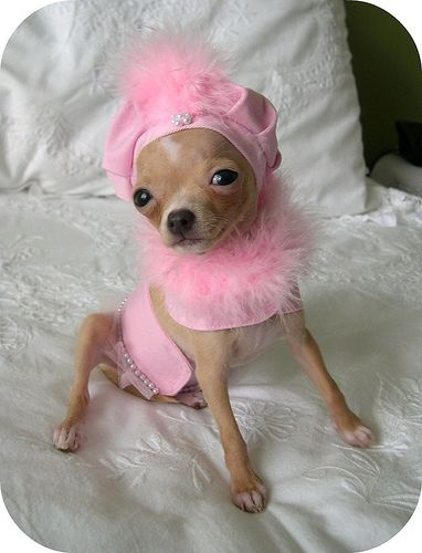 Pretty in Pink...hahaha