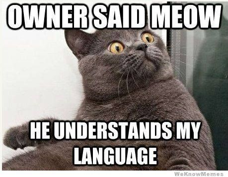 """Do you ever """"speak"""" to your pets?"""