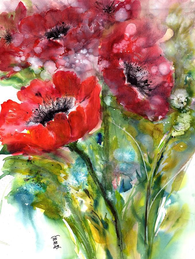 Red Anemone Painting Red Anemone Flowers By Sabina Von Arx Flower Painting Flower Canvas Red Anemone