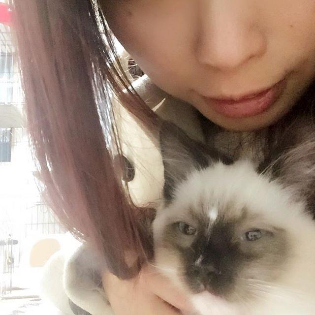 おやすみッッ✩⋆* . #バロン #オス #3ヶ月 #もうすぐ4ヶ月 #ラグドール #デカぃ(笑) #食いしん坊 #可愛い #大好き #溺愛してます #愛猫