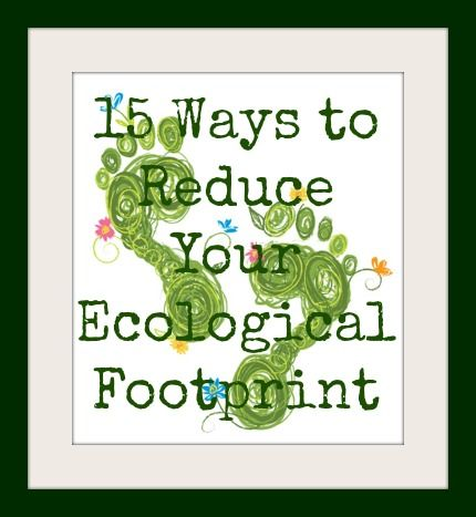 reduce your ecological footprint essay Read ecological footprint essays and research papers  lessen your ecological footprint [ order custom essay ]  life right now to reduce your ecological footprint.