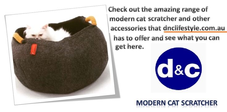 Check Out The Amazing Range Of Modern #cat #scratcher And Other Accessories  That Https://dnclifestyle.com.au/ Has To Offer And See What You Can Getu2026