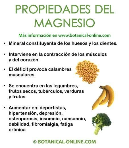 """TU SALUD: Ana María Lajusticia: """"El magnesio curó mi artrosis y es clave para la salud"""""""