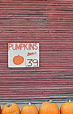 Pumpkins for Sale...