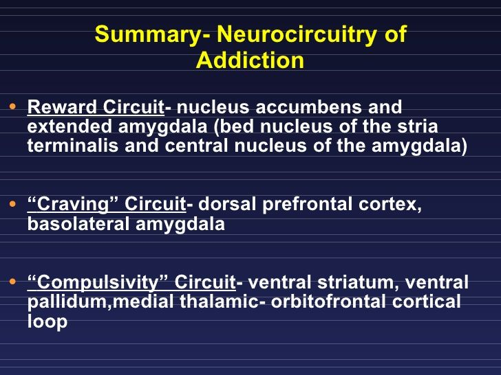 ... Nucleus Accumbens; 8. Summary- Neurocircuitry of Addiction ...
