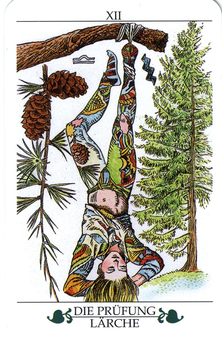 XII .The Hanged Man - Larch - Madru-Das Baum Tarot