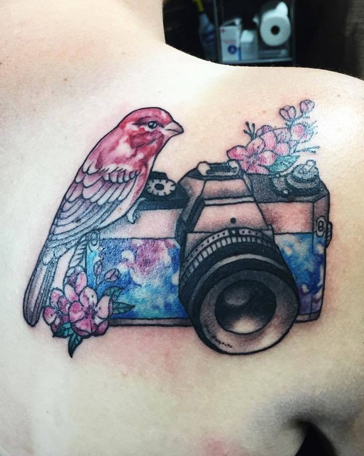 Chronic Ink Tattoo - Toronto Tattoo  Watercolour finch and camera tattoo done by Livia.