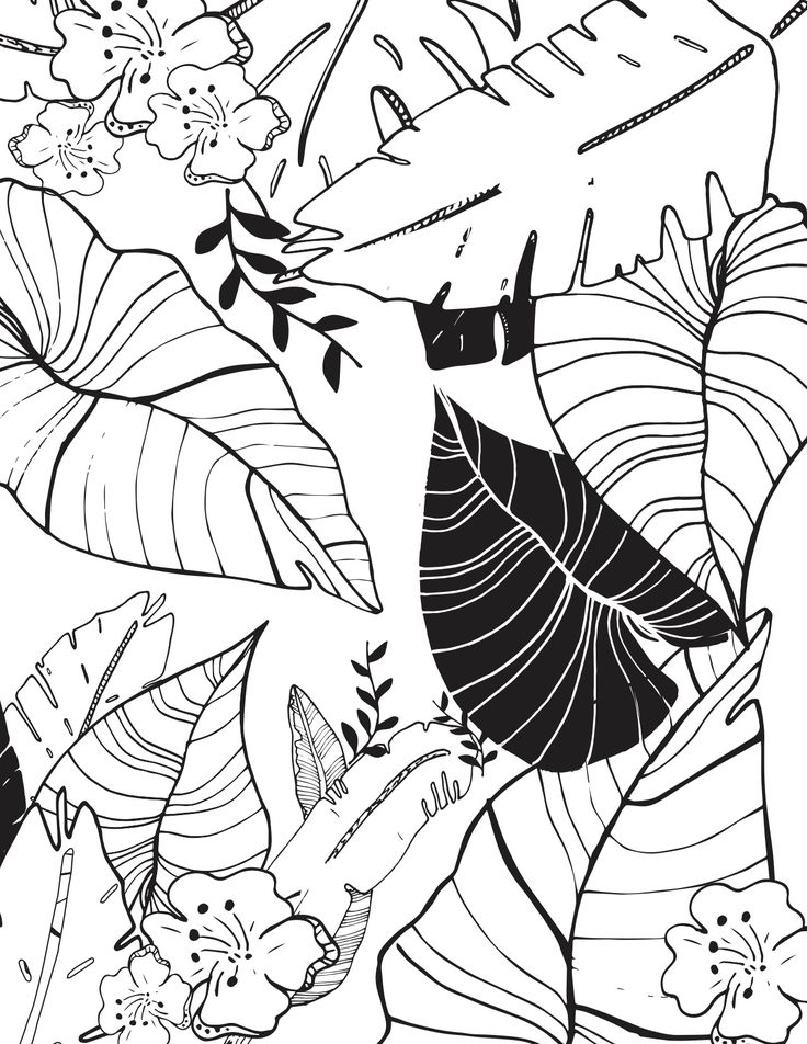 free printable coloring page 10 from bloom daily planners free 85 x 11 pdf
