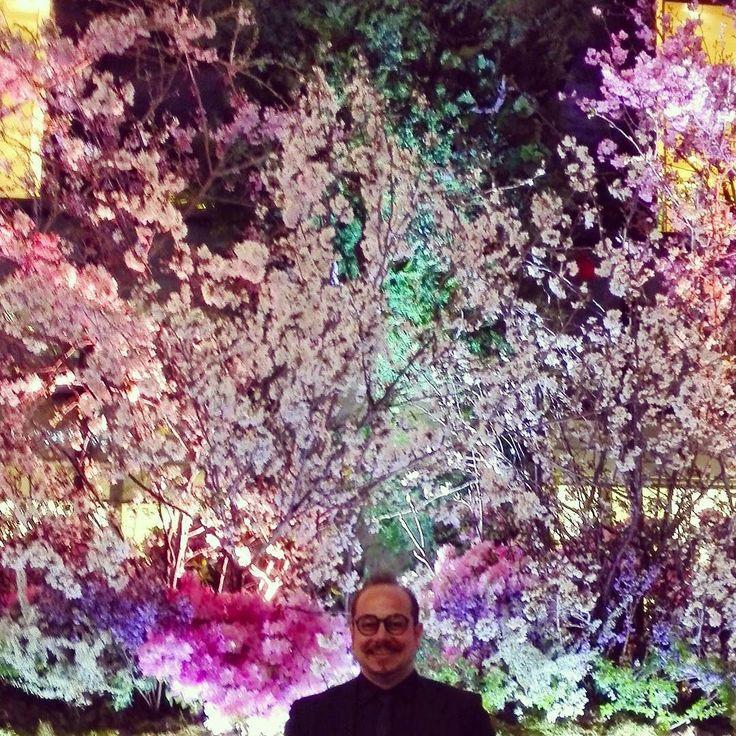 #sakura #flowers #tokyo #ginza #japan #pink #colorfull