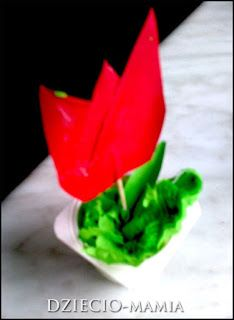 tulip, spring flowers, diy, gift for Mothers Day or Fathers Day